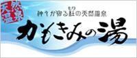 side_banner1_df